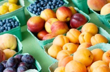 Хороший урожай: аналитика рынка труда в агросфере