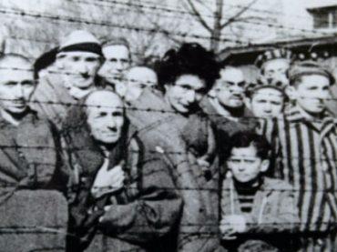 В Германии судят 95-летнего бывшего сотрудника Освенцима