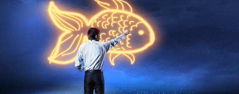 как увидеть новые возможности для своего профессионального развития
