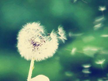 Хорошее настроение: 15 простых способов, как не дать его испортить никаким обстоятельствам