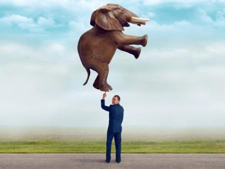 «Нарисуйте слона»: 45 неожиданных вопросов, которые задавали украинцам на собеседовании