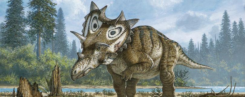 Палеонтолог-любитель обнаружил неизвестного ранее динозавра