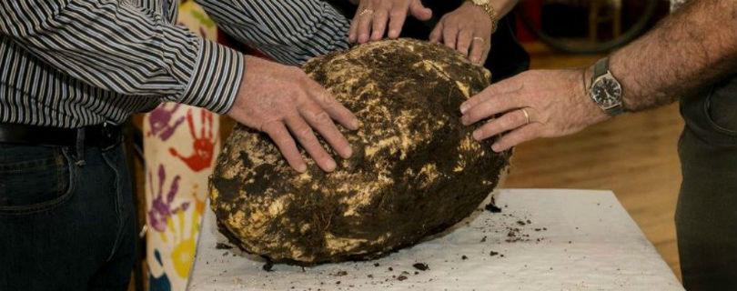 Ирландский рабочий нашел в торфянике кусок масла 2000-летней давности