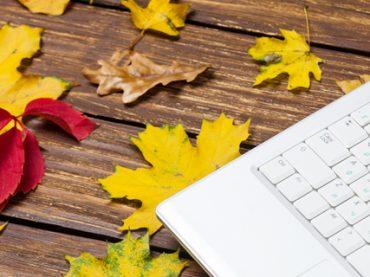 Осенний сезон: кого искали работодатели в сентябре