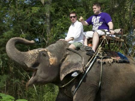TripAdvisor пытается удержать туристов от эксплуатации диких животных