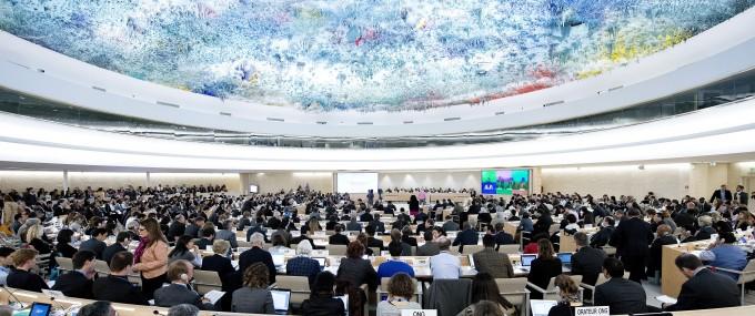 работа в ООН