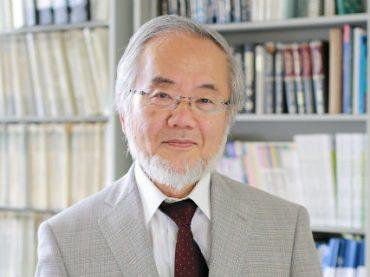 Нобелевскую премию по медицине присудили японскому исследователю