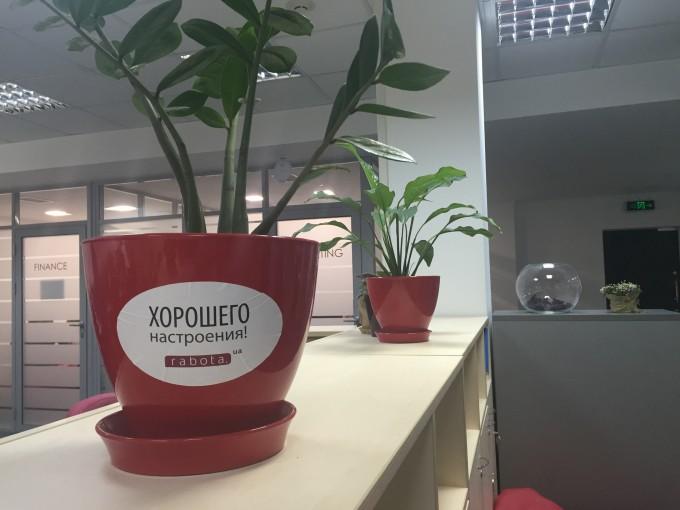 Как работать в rabota.ua: 7 главных вопросов топ-менеджеру компании