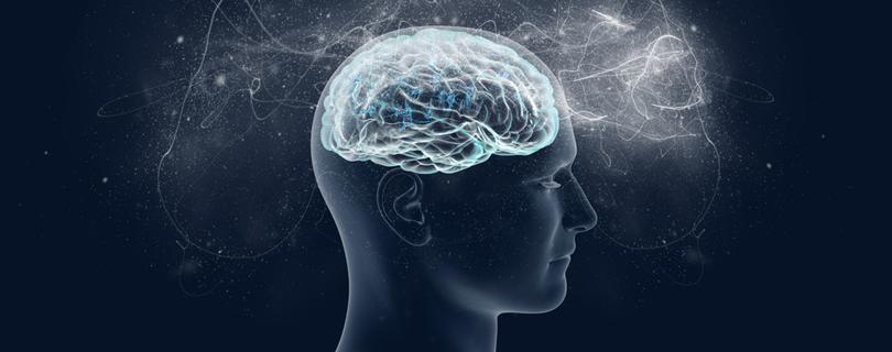 """Лекция """"Как мозг определяет, что для нас важно? Часть 2. Нейросеть значимости и наркотические вещества"""""""