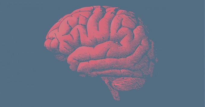 Разумный отдых: как провести новогодние выходные с пользой для мозга