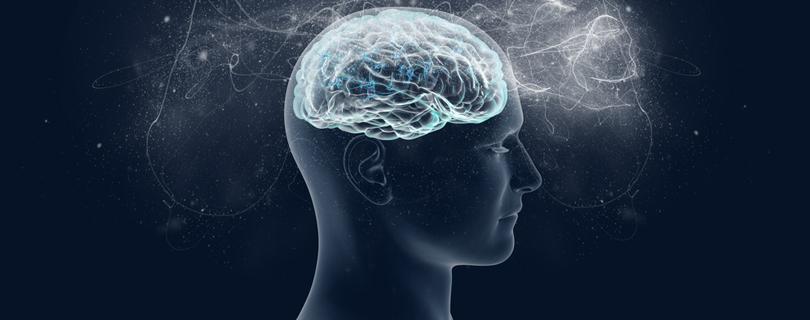 Сила мысли: 5 выступлений о том, как работает наш мозг и память