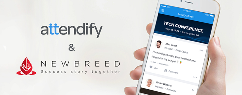 Newbreed Young Talents: стартует проект для тех, кто хочет построить карьеру в IT