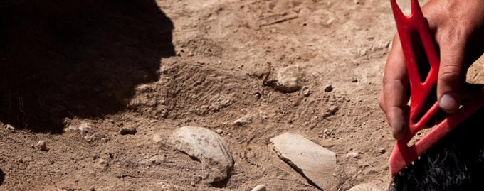 Science Rocks: встреча с археологом Эвелиной Кравченко