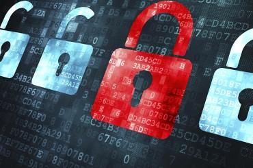 Сотрудники 95% компаний нарушают правила кибербезопасности — исследование