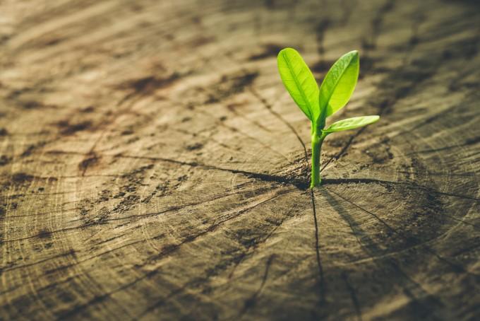 Стоять нельзя развиваться: как не позволить предубеждениям саботировать ваш рост