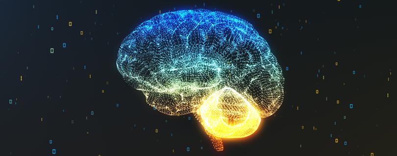 Лекторий нейронаук BRAINY «Язык глазами биологов»