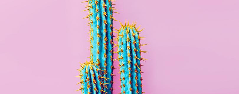 На низких тонах: 4 способа, как справиться с раздражением