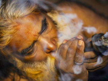 Власти Индии задумались о легализации марихуаны