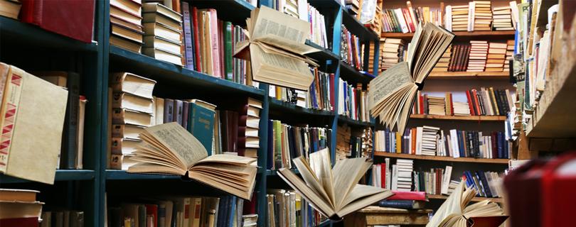 Про мислення від Нобелівського лауреата, мемуари Кінга та як полюбити ранок: 10 книг, які варто «вполювати» на «Форумі видавців»