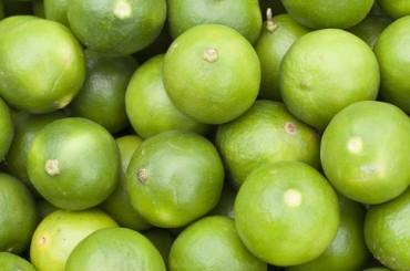 В поисках «фрэшей»: 16 стажировок сентября на любой вкус
