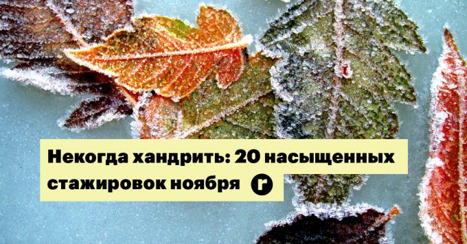 Некогда хандрить: 20 насыщенных стажировок ноября