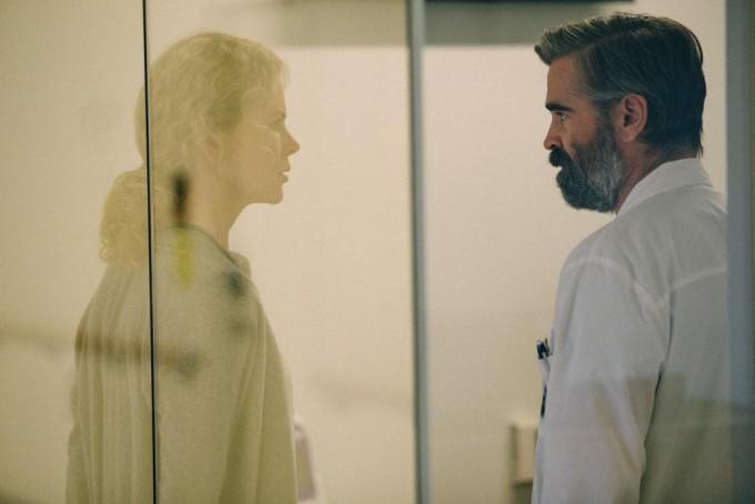 Котики, ошибки врачей и страсть художника: 5 фильмов, на которые стоит пойти в кино в январе