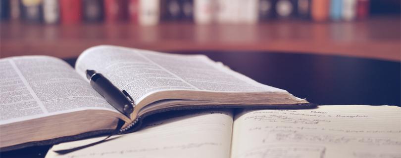 Воркшоп «Як працює перекладач?»