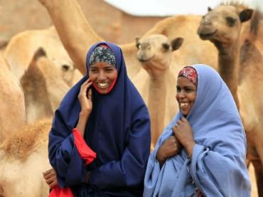 Краудфермерский проект позволяет купить козу в Сомали
