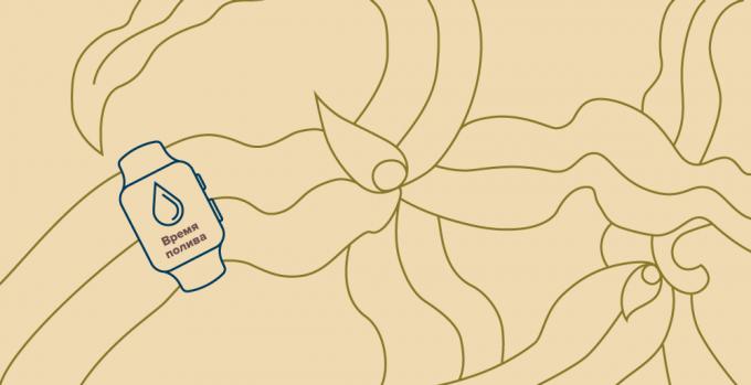 Непаханое поле: 9 мифов о работе в агросекторе и их опровержение