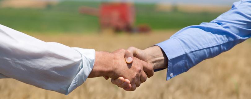 Украинцам в Польше бесплатно помогут найти работу