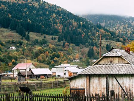 Желающие работать в селе получат льготу при поступлении в вузы