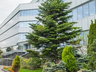Отпечаток пальца вместо ключа, чат-бот и «зеленые» принципы: как выглядит офис современной агрокомпании