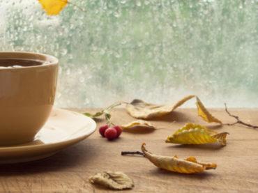 Осенний бум: 10 перспективных стажировок сентября