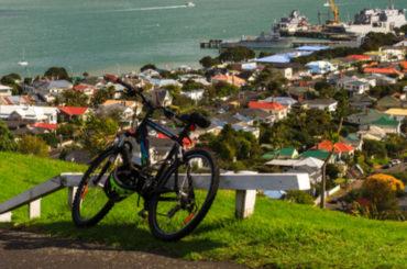 Эксперимент удался: новозеландская компания перешла на четырехдневную рабочую неделю