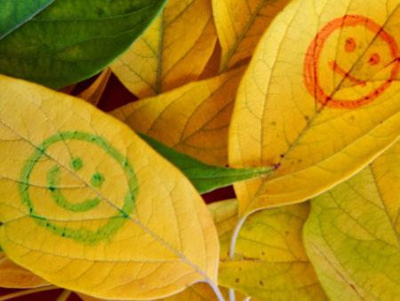 Лекарство от хандры: 10 интересных стажировок ноября