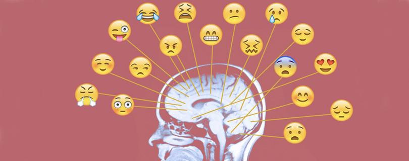 Практикум «Эмоциональный стресс и мозг»
