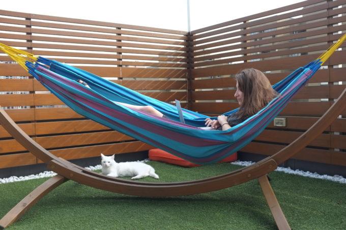 Кеша выступает на совещаниях, хомяки помогают решать задачи, а удав Арни вдохновляет: 7 animal-friendly офисов и их питомцы