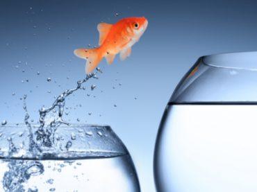 Level up: краткий инструктаж по планированию карьеры