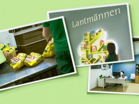 Арт-объект, корпоративное кафе и «аллея славы»: как проходят рабочие будни в компании «Лантманнен Акса»